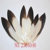 Wholesale rare precious 20pcs15 20CM (6 8 inch) small white eagle feathers, home accessories, jewelry, decorations