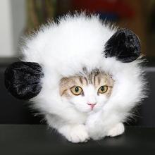 Cat Lion Costume 2017