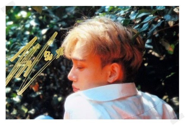 signed EXO CHEN Kim Jong Dae autographed  origina  photo  6 inches free shipping 08201702 got7 got 7 youngjae kim yugyeom autographed signed photo flight log arrival 6 inches new korean freeshipping 03 2017