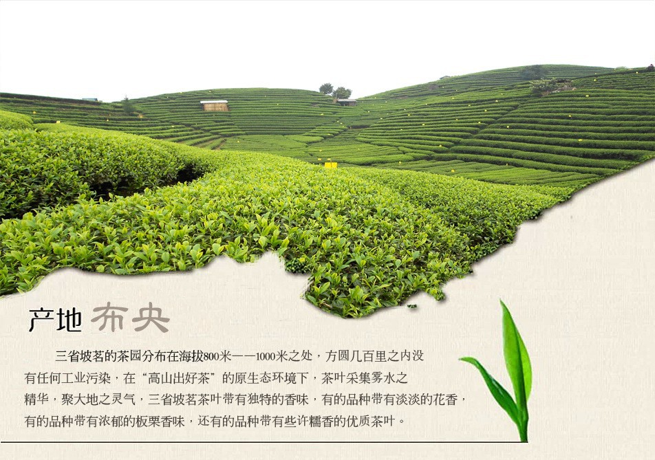 C-HC040 Wholesale China's Top Tea 250g Wuyishan Paulownia off Jinjunmei black tea Top Red Tea Bulk