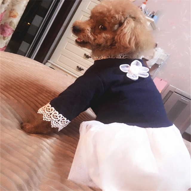 Pet Dog Clothes Supplies Haberdashery Female Summer Tutu Tulle Skirt