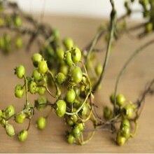 Циррус американская деревенская Декор для гостиной liana вьющееся растение моделирование подвесное потолочное украшение фруктовый тростник ветка растения