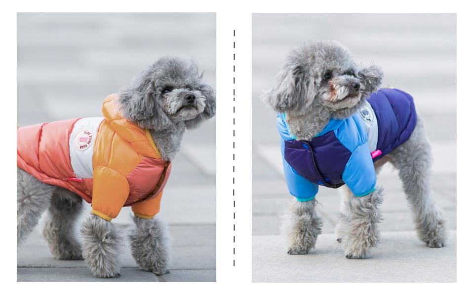 Nueva ropa de invierno para perros, abrigo impermeable con capucha 15