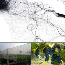 network Agricultural Field Bird-Preventing Anti Bird Netting Net Mesh For Fruit Crop Black Plant Tree In Garden Anti-bird New(China)