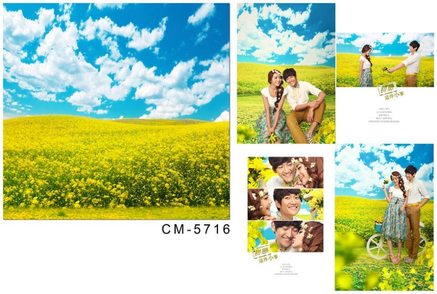 საქორწილო ფონი - კამერა და ფოტო - ფოტო 2