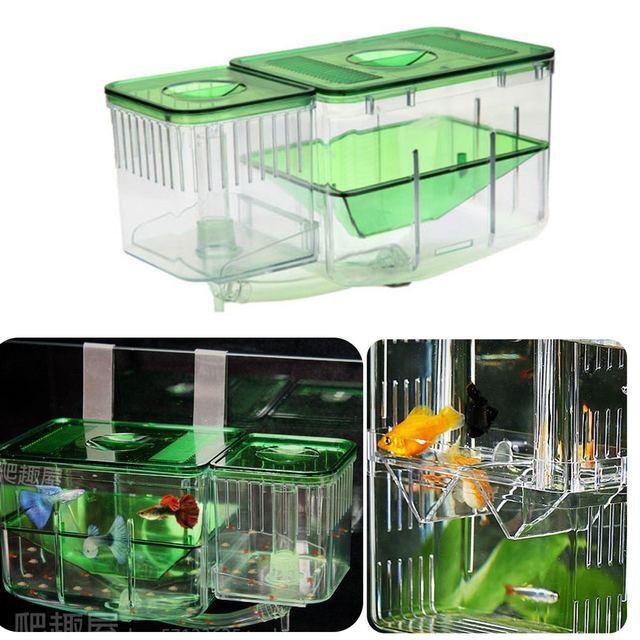 Fish Breeding Aquarium  1