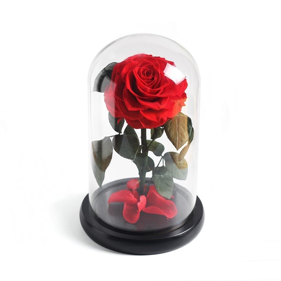 Красавица и Чудовище красная роза в стеклянном куполе на розовой гостиной спальни украшения стола подарки на день Св. Валентина подарки на день рождения - Цвет: red