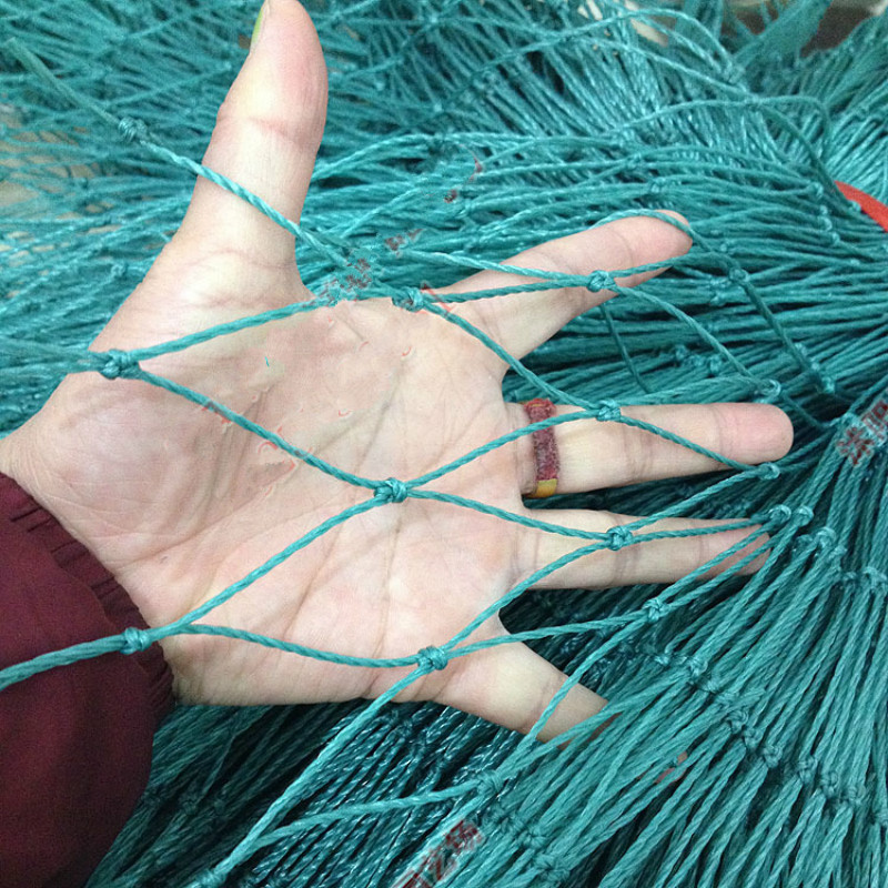 50 SQUARE METERS LOT Bird Nets Poultry CHICKEN Breeding Fence Vegetable Plants Climbing Courts Garden Tools