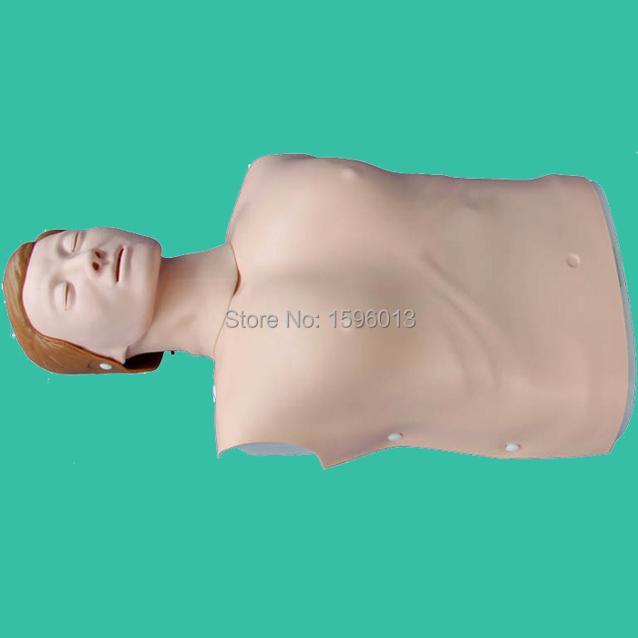 Half Body CPR Training manikin Model, First Aid manikin, Female CPR Manikin whole body basic cpr manikin style 200 male female nursing manikin