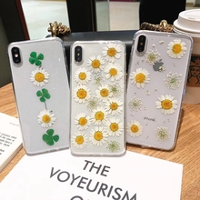 Real Dried Flower Cases For iPhone X XS Max XR 6 6S 7 8 Plus Case Handmade Clear Soft Fresh Daisy Phone Back Cover Capa