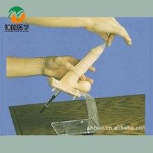 BIX-F5M Contraception Simulator Male Condom Practice Model  MQ064