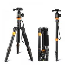 QZSD Q278 Professional แบบพกพาอลูมิเนียม Travel น้ำหนักเบาขาตั้งกล้อง Monopod Ball Head สำหรับ Nikon DSLR