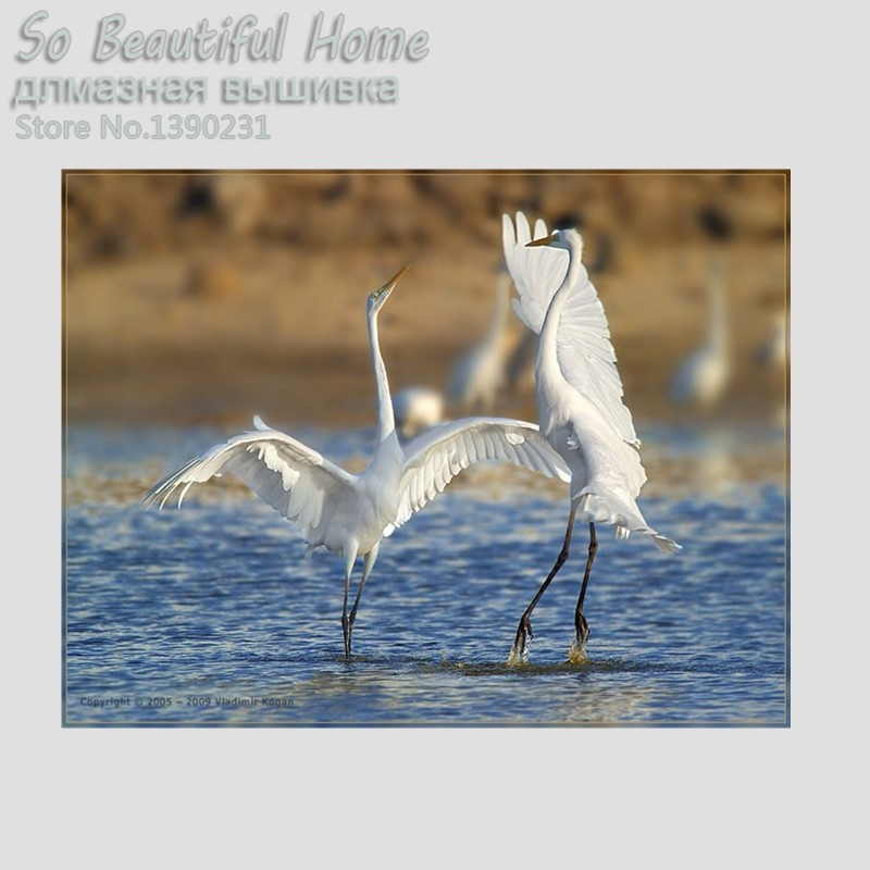 DIY diamond Mosaic painting Cross Stitch Square Diamond Embroidery Needlework white swan on river scenery decorationSH61223