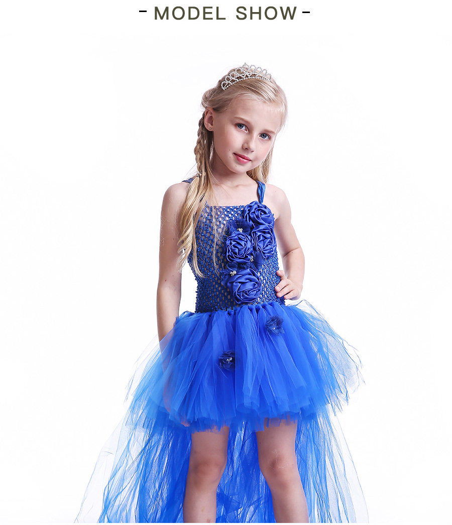 Royal Blue Flowers Girls Tutu Dress High Low Ice Princess Tulle Dress for Wedding Pageant Party Handmade Baby Photo Costume (4)