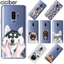 Ciciber For Samsung Galaxy S10 S9 S8 Plus S10e Back Cover Soft TPU Phone Case For S5 S7 S6 Edge S5 mini Cute Funny Pug Dog Coque cute cartoon owl pattern tpu back case for samsung s5 green