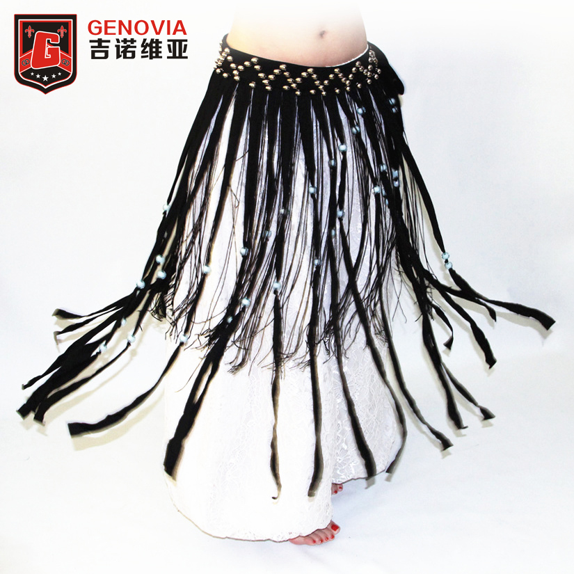 Belly Dancing Clothing Skirt Dance Wear Accessory Coin Fringe Tassel BELT
