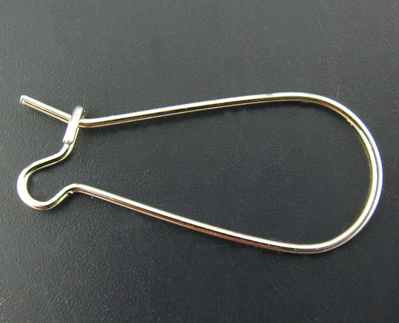 Alloy Earrings Earring Findings Twist Silver Color 25mm(1