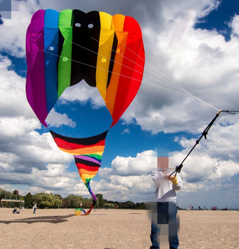 Torrey kite boobs