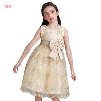 B N Embroidery Girl Dresses For Party And Wedding Sleeveless Princess Dress Girls Princess Dress Kids