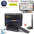 1 Año Cccam Europa Freesat V8 Super + 1 unid USB WiFi DVB-S2 apoyo Cccam Receptor de Satélite HD Lleno 1080 P 3 Clinales PowerVu servidor