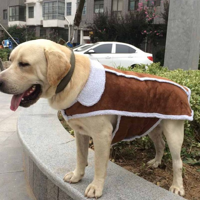 Grande Maglia Del Cane di Lusso Pelle di Daino Pet Vestiti Cappotto per Cani  di Grossa 9dd12114653f