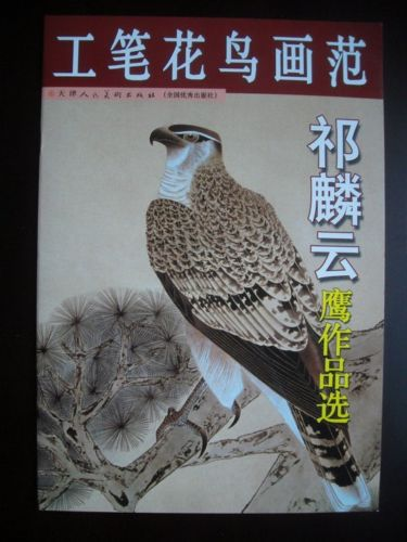 ФОТО China Eagle HAWK Chinese Painting Sketch Book