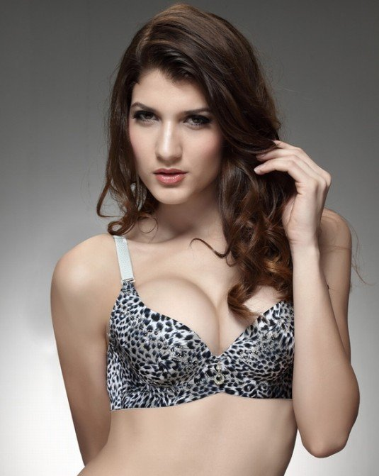 Online Shop (Free Shipping)Sexy padded Bra Fashion Leopard Design ...