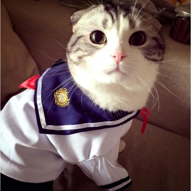 Discussion générale - Page 32 New-Navy-Cat-Clothes-Pet-Costume-Sailor-uniforms-Dressing-Up-Skirt-Summer-Cotton-Outfit-Clothes.jpg_640x640