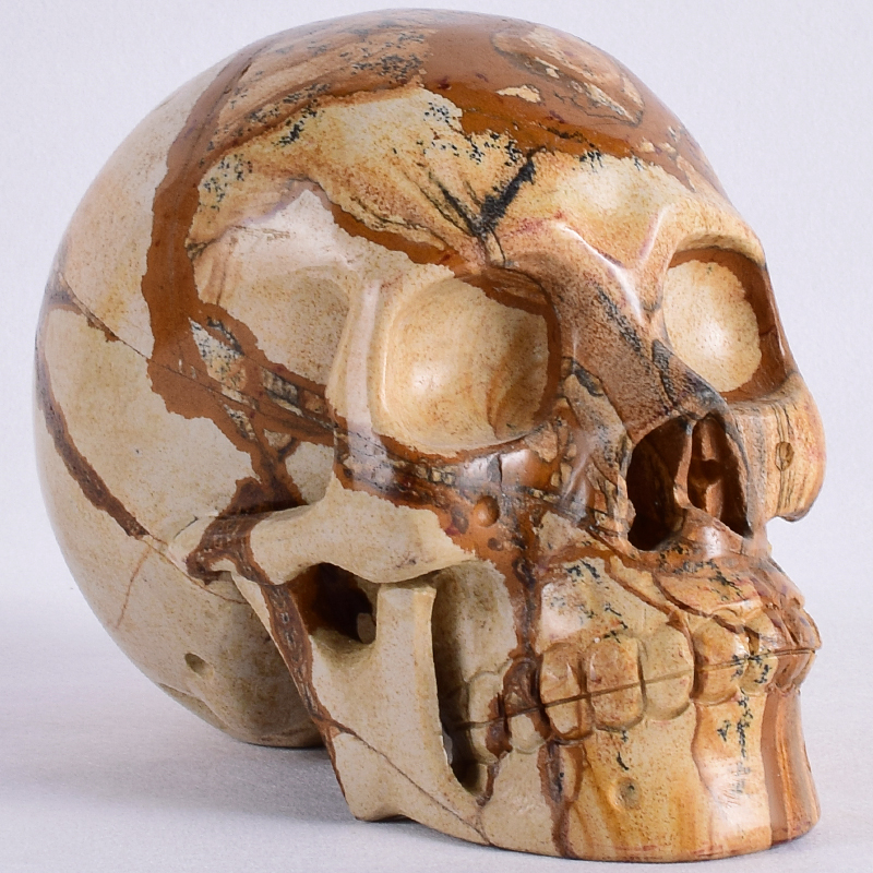 6 Inch 2399 g Picture Jasper  skull figurine Natural stone new style Handmade statue Carving craft Healing Reiki Home Decor6 Inch 2399 g Picture Jasper  skull figurine Natural stone new style Handmade statue Carving craft Healing Reiki Home Decor