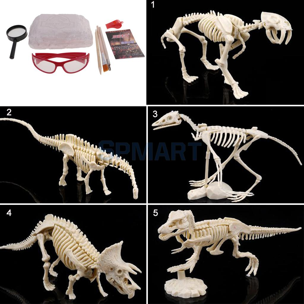 NEW Large Dinosaur Excavation Kit Dig & Discover Dinosaur Skeleton Dinosaur Kids History Fun Toys