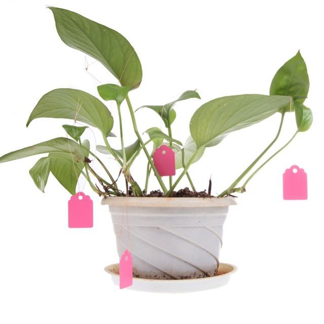 100Pcs Reusable PVC T-type Garden Plant Labels Waterproof Nursery Flower Tag Marker for Plants Garden Decoration