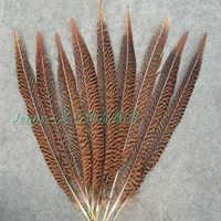 Hurtownie 100 sztuk piękne naturalne złoty pióra bażancie 30-35 cm/12 do 14 cali
