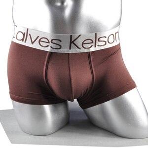 Image 4 - CalvesKelson Boxers 10PCS/Lot Men Bulge Pouch Panties Modal Breathable Softy Cotton Mid Rise Hip Mens Underwear M XXL Men Boxers