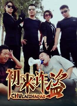 《初来诈盗》2015年中国大陆喜剧,犯罪电影在线观看