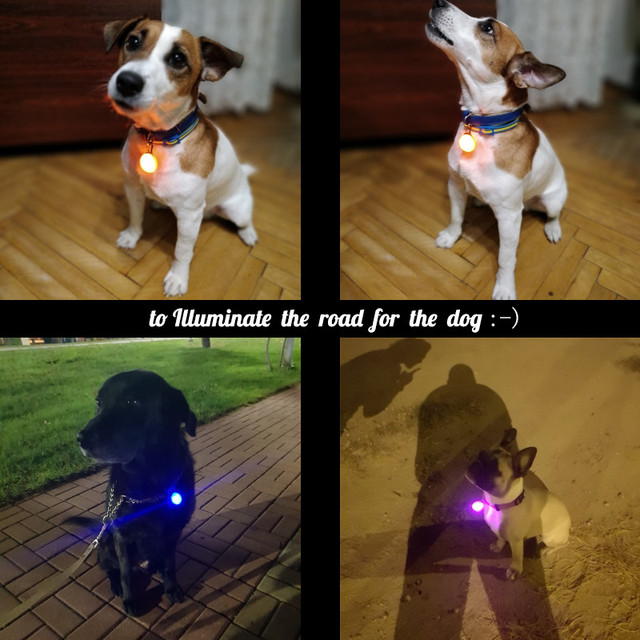 Pet Night Safety LED Flashlight Collar Dog Guide Lights Glowing Pendant Necklace Pet Luminous Bright Glowing Collar in Dark 1