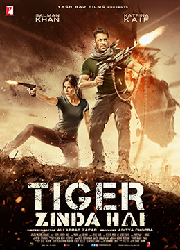 《猛虎还活着》2017年印度动作,惊悚,冒险电影在线观看