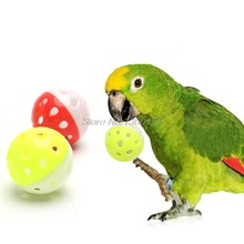 Pet Parrot Toys Bird Hollow Bell Ball For Parakeet Cockatiel Chew Fun Cage Toys 1PC Nov18 Dropship(China)
