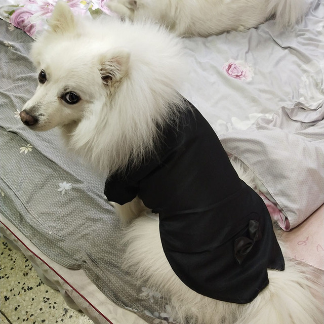 Male Dog Clothes Boy Dog Suit Tuxedo Coat Jacket Puppy Pet Wedding Dress Small Dog Chihuahua Costume Black Pet Party Apparel 2