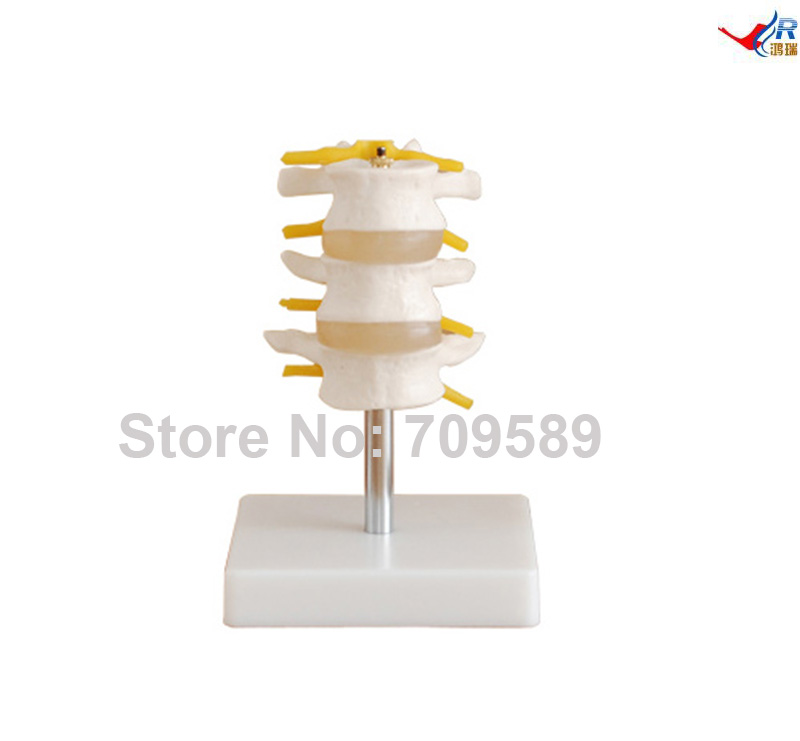 Lumbar Set (3 pcs)Lumbar Set (3 pcs)