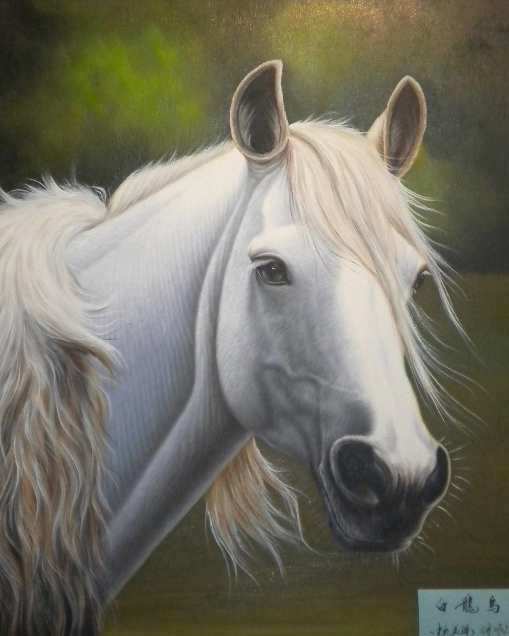 f720d7194 ⑤عالية الجودة رسمت باليد الحيوان النفط الطلاء على قماش: الحصان 24 x ...