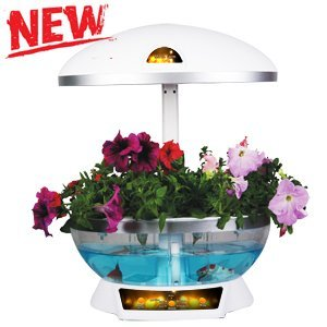 Smart Garden Mocle farm aeroponics products Factory Direct