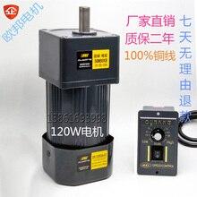 120W 220V AC gear speed motor / 5IK120RGN-CF