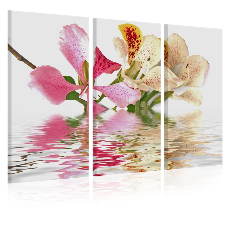 3 pieces framed Wall Art Picture Gift Home Decoration Canvas Print painting Fashion flower series wholesale in Painting Calligraphy from Home Garden