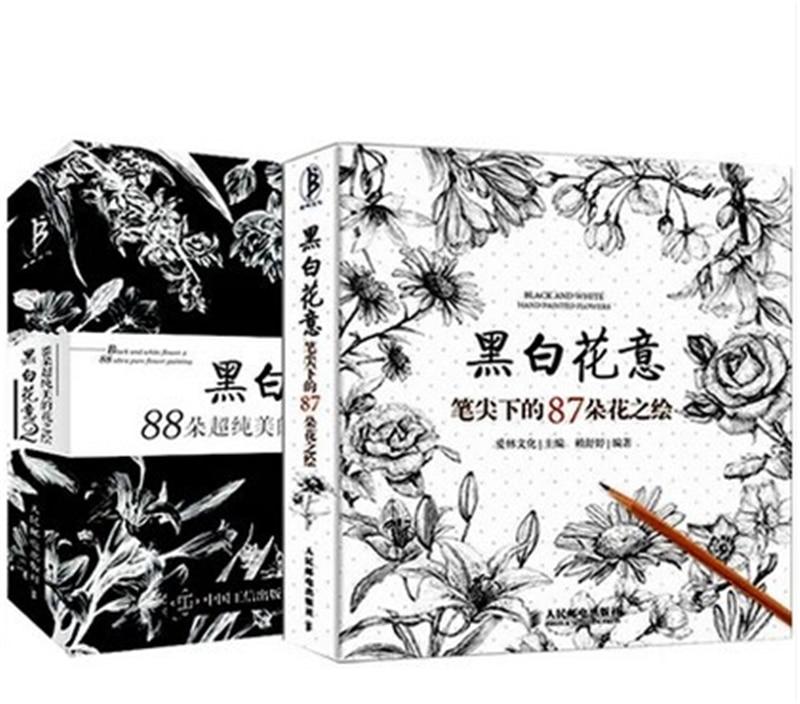 2 Livresset Croquis Crayon Peinture Techniques Livre Noir