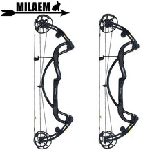 1pc Archery Compound Bow Adjustable 40-65lbs IBO330 FPS Carbon Fiber With Carbon Stabilizer Hunting Accessory