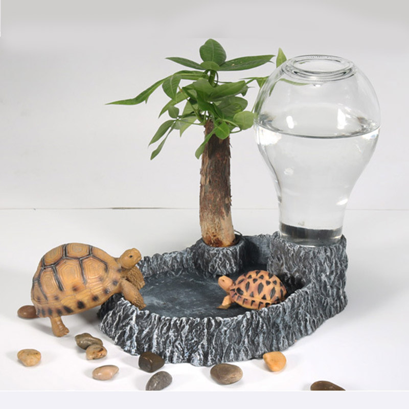 943f59adeaaf Water feeder for tortoises and lizards aquarium decoration pet water  dispenser jellyfish for turtle tank crawler drinking tray
