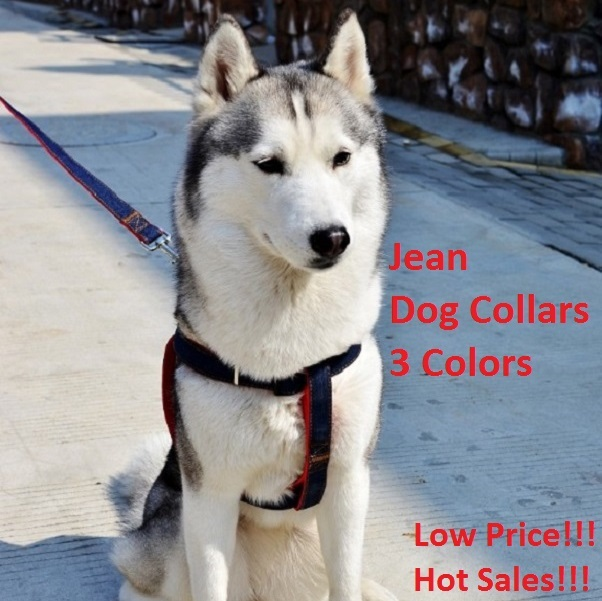 for Dogs 2015 New Arrival Hot Sales Solid Colors Colorful Jean Denim Leash Harness Dog Collar Chain Safety Belt Suit for Or Pets