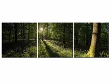 3 Piece Leaves Forest Tree Sunshine Painting Canvas Print Room decor poster Picture Canvas Wall Art Frame QJFJ3-56
