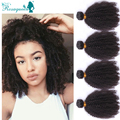 Cambodian Virgin Hair Afro Kinky Curly Virgin Hair 4Pcs/Lot Natural Black Cambodian Curly Hair Free Shipping Rosa Queen Hair
