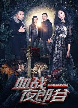 《血战夜郎谷》2017年中国大陆电影在线观看